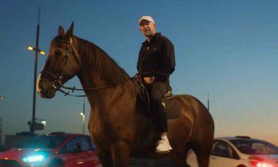 Sokół na koniu