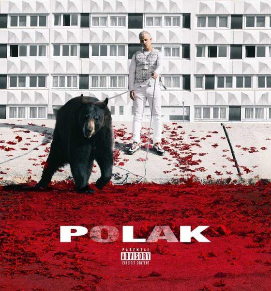 """PLK Polak okładka płyty PLK - """"Polak"""""""