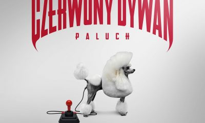 Czerwony Dywan okładka Paluch