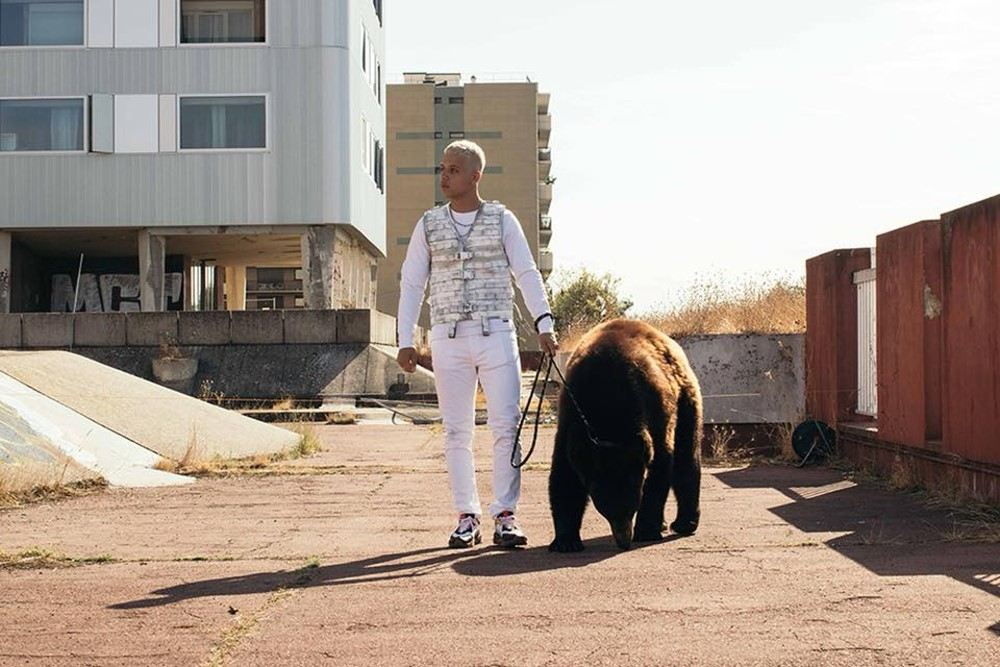 PLK z niedźwiedziem