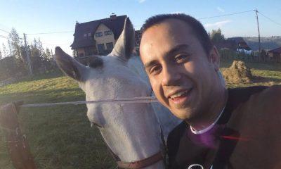 raper zioło przy koniu